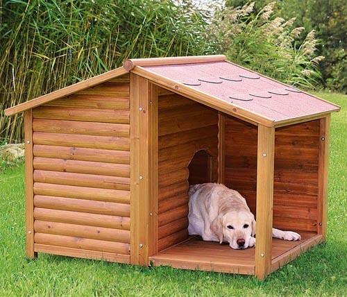 Пес в самодельном домике
