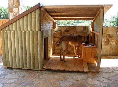 Собачья будка своими руками с навесом